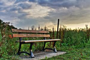 Bench (High Dynamic Range)
